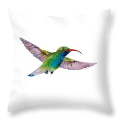 Cheer up any room with this Throw Pillow featuring the watercolor painting BROAD BILLED HUMMINGBIRD by Amy Kirkpatrick, $32 • AmyPrint.com #hummingbirds