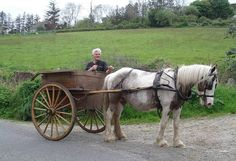 #irish #horse | Irish Horse And Cart Graphics Code | Irish Horse And Cart Comments ...