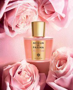 ACQUA DI PARMA ROSA NOBILE finalista categorie miglior profumo dell'anno, miglior profumo made in Italy femminile