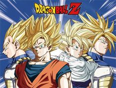 Dragon Ball Z Super Saiyan Goku, Vegeta, Gohan & Super Saiyan Throw Blanket