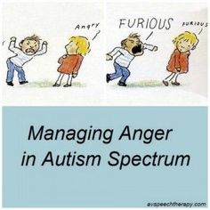 Managing Anger in Autism Spectrum - ways to avoid meltdowns and how to help when your student has one