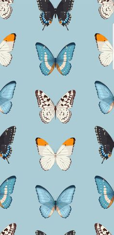 Butterfly Wallpaper Iphone, Iphone Background Wallpaper, Pastel Wallpaper, Screen Wallpaper, Cool Wallpaper, Cute Wallpaper Backgrounds, Wallpaper Pictures, Tumblr Wallpaper, Pretty Wallpapers