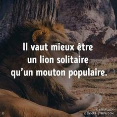 les plus beaux proverbes à partager : Tout a fait Positive Attitude, Positive Quotes, Motivational Quotes, Positive Affirmations, Inspirational Quotes, Best Quotes, Funny Quotes, Life Quotes, Quote Citation