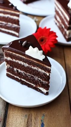Just Desserts, Delicious Desserts, Dessert Recipes, Frosting Recipes, Yummy Food, Chocolate Cake With Coffee, Chocolate Frosting, Chocolate Chocolate, Chocolate Cupcakes