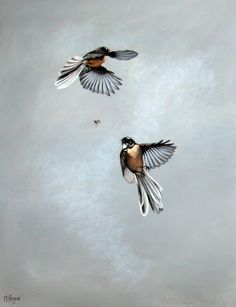 NZ Artist Mandy Hague. This picture captures the way that fantails flit about you. Very cheeky little birds...love them.