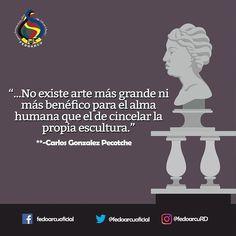 Frases sobre la escultura. #fedoarcuRd #frases  #arte #cultura #escultura #esculpir #cincel #musica #pelicula #fotografia #poesia #poema #libros #literatura #teatro #danza