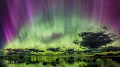 Northern Lights - Argo Nurs