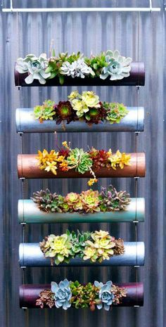 diy garden ideas Vertical gardens are a great way to create micro gardens either indoors or out, and can be used to grow all sorts of plants. Here are the 11 Best Ideas. Hanging Succulents, Succulents Garden, Planting Flowers, Succulent Planters, Succulent Display, Succulent Ideas, Hanging Pots, Garden Planters, Indoor Succulent Garden