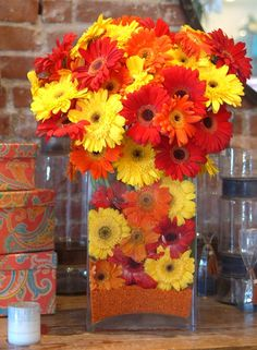 Scorching gerberas. These are one of my favorite flowers and come in a wide range of colors.