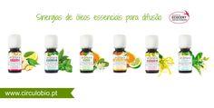 Sinergias de óleos essenciais bio para difusão