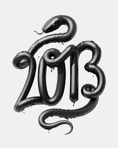 2013 - Year of the Snake by David McLeod, via Behance