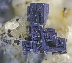 Perovskite, Nepheline, Fluorapatite