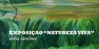 GALERIA VIEIRA PORTUENSE: NATUREZA VIVA, pintura de Antia Sanchez, Março de ...