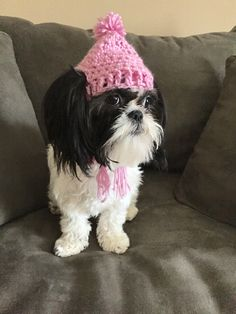 Momma made her a hat