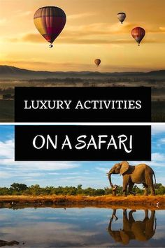 5 Luxury Activities You Didn't Know You Could Do On A Safari!