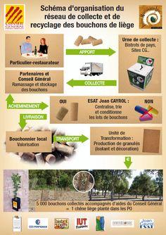 La collecte et du recyclage des bouchons en liège dans les PO - Conseil Départemental des Pyrénées-Orientales