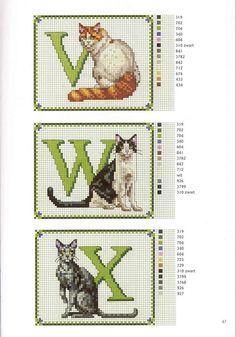 ABC GATOS (V, W, X)