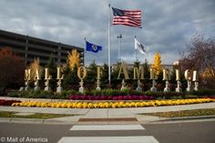 Spending Spring Break at the Mall of America is sure to be very popular with your family. Read about everything the Mall of America has to offer. Group Travel, Family Travel, Happy 60th Birthday, Sister Cities, Mall Of America, Travel Articles, Cn Tower, Spring Break, Attraction