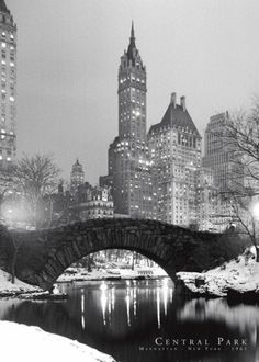 Central Park in Winter  - New york in the xmas season