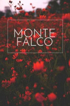 Credits to Engelle Faye Elijah Montefalco, Pop Fiction Books, Jonaxx Boys, Wattpad Cover Template, Lines Wallpaper, Wattpad Quotes, Story Quotes, Picture Credit