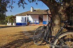 Foto de Stock Royalty Free: Casa e bicicleta rurais. Imagem: 21910705