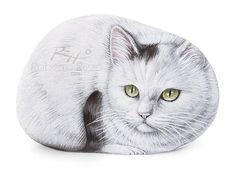 I Painted this Light Cat on a Natural Sea Rock. An Original Piece of Art and a great Gift Idea for all of you, cat lovers! My painted stones are unique pieces of art. #cat #cats #paintedrocks #paintedpebbles #paintedstones #catart #fineart #art #acrylic #robertorizzo #etsyfinds #etsyshop #etsylove