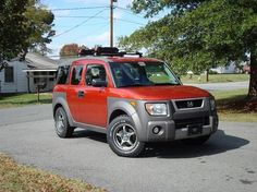 Brush guard and roof rack