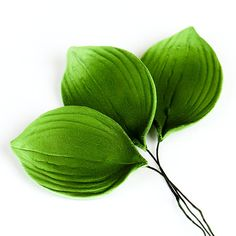 Gumpaste Orchid Leaf perfect for cake decorating with sugarflowers. | CaljavaOnline.com