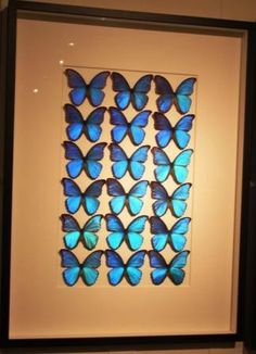 Pheromone by Christopher Marley in the Salon at the Suites at Market Square. This butterfly morpho color palette really gives a whole new meaning to bringing the outdoors in! #hpmkt Pinned via web
