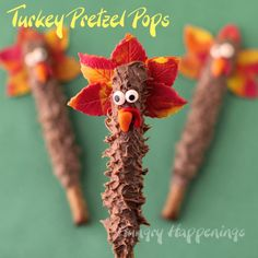 Thanksgiving Day Treats - Chocolate Turkey Pretzel Pops by Hungry Happenings