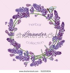 Vector lavender flowers wreath banners on lilac background. Design for cosmetics, make up, store, beauty salon, natural and organic products, health care products, aromatherapy. With place for text