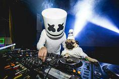 Cão DJ