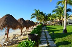 All-Inclusive Resort Secrets Capri, Cancun- Beach photo with loungers, rustic path, and palm trees. Great honeymoon inspiration!