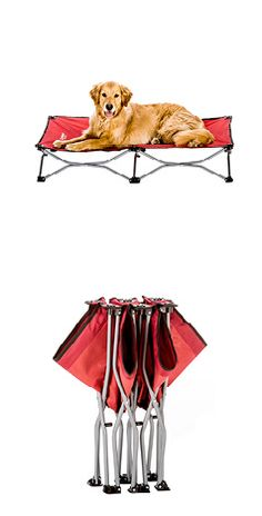 Carlson Large Portable Dog Cot In Red