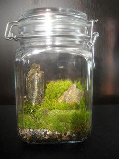 Tiny world inside of a jar