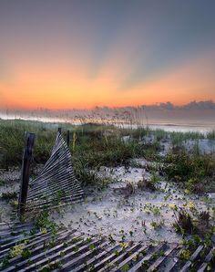 South Carolina shoreline at sunrise