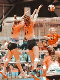 Volleyball Memes, Volleyball Workouts, Play Volleyball, Volleyball Pictures, Women Volleyball, Sports Pictures, Libero Volleyball, Love And Basketball, Basketball Teams