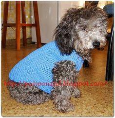 20 geniales gorros tejidos para perros y gatos | Caracteres