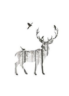 Deer silhouette, poster