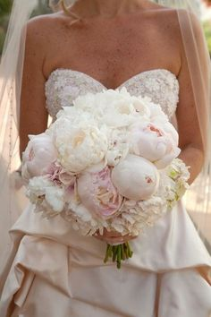 peonies! Love this for wedding bouquet! I don't think we have 'em on island though :(