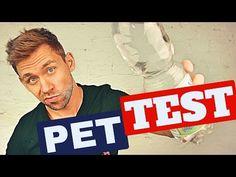 ➤ PLASTIKFLASCHE: Der ultimative Geschmackstest ツ #ZeroWaste | Max GREEN - YouTube