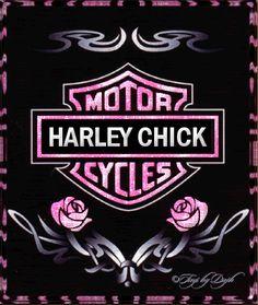 Harley Davidson Decals, Harley Davidson Merchandise, Harley Davidson Tattoos, Harley Davidson Pictures, Harley Davidson Gifts, Harley Davidson Wallpaper, Harley Davidson Sportster, Harley Tattoos, Motor Harley Davidson Cycles