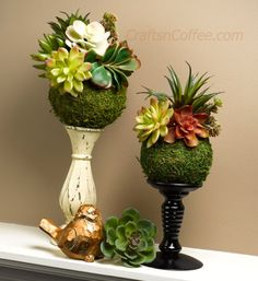 Succulent Moss Balls are a super-easy DIY. They're made with faux succulents, so… Artificial Succulents, Faux Succulents, Faux Plants, Succulents Garden, Garden Plants, Succulent Ideas, Indoor Garden, Ikebana Arrangements, Floral Arrangements