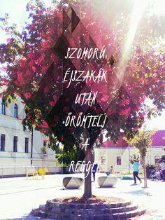 Punnany Massif - Élvezd Lyric Quotes, Lyrics, Art Projects, Feels, Neon Signs, Wallpaper, Anime, Wallpapers, Song Lyrics