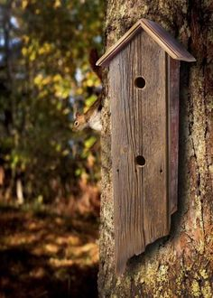 Barn wood Bird House - you need to have bird houses at the lake house!!
