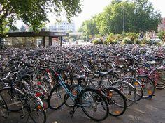 Multimea de biciclete,Sute de bicicleta in parcare!