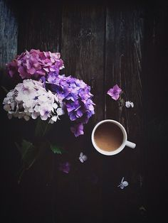 Morning coffee & hydrangeas
