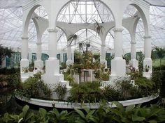 The orchid conservatory at the Rio de Janeiro Botanical Garden.
