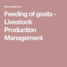 Feeding of goats - Livestock Production Management Zoo Animals, Livestock, Pet Care, Poultry, Sheep, Goats, Management, Blue, Backyard Chickens
