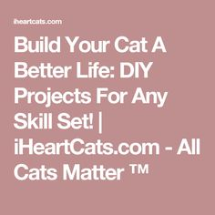 Build Your Cat A Better Life: DIY Projects For Any Skill Set!   iHeartCats.com - All Cats Matter ™
